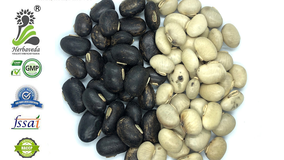 Mucuna Prurien or Kaunch Seeds