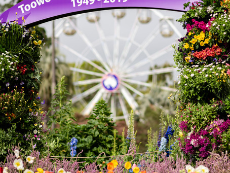 Toowoomba Parks in the Spring | Carnival of Flowers 2019