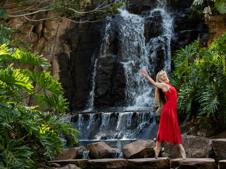 The Dancer & The Waterfall | Picnic Point