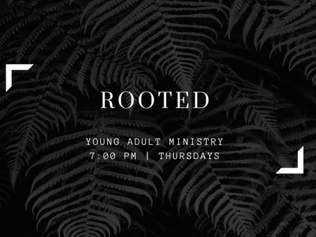 ROOTED: Young Adults (ages 18-30) // Thursday nights @ 7 pm