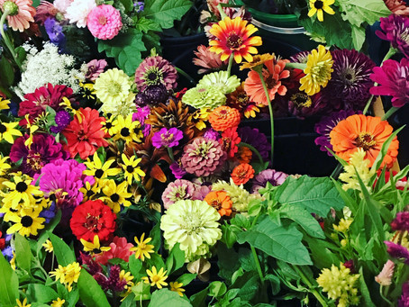 Weekly flower subscriptions now available!