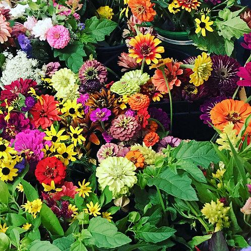 Bouquet Subscription Session #1