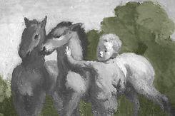 paardenkind.JPG