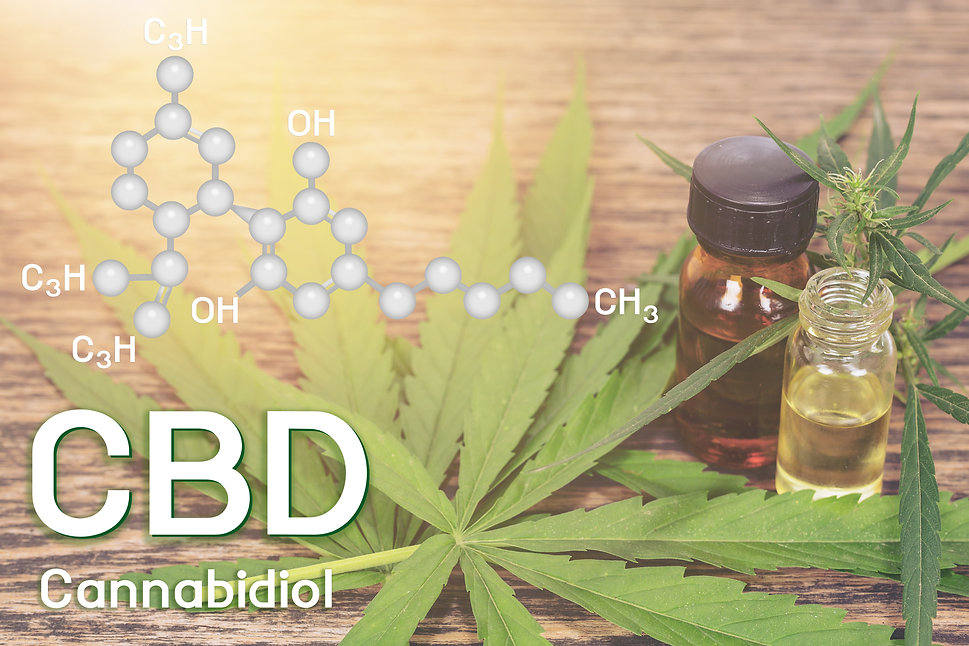 Cbd oil, Cannabis of the formula CBD..jp