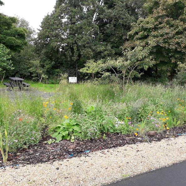 Balla Biodiversity Garden