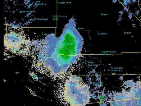 Nuvem de joaninhas confunde satélites na Califórnia
