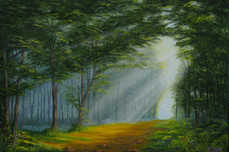 Light Through The Woods.jpg