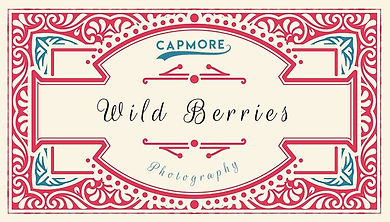 Capmore%20Photography%20Logo%20WB_edited