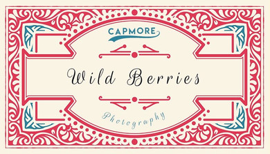 Capmore%20Photography%20Logo%20WB_edited