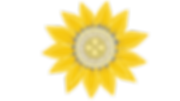 Flower_03 (0;00;03;08).png