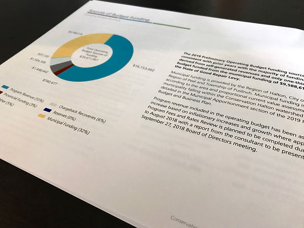 CH Budget Report 4
