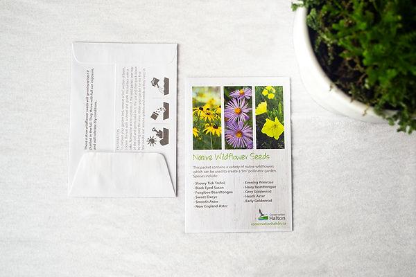 Wildflower Pack 3.jpg