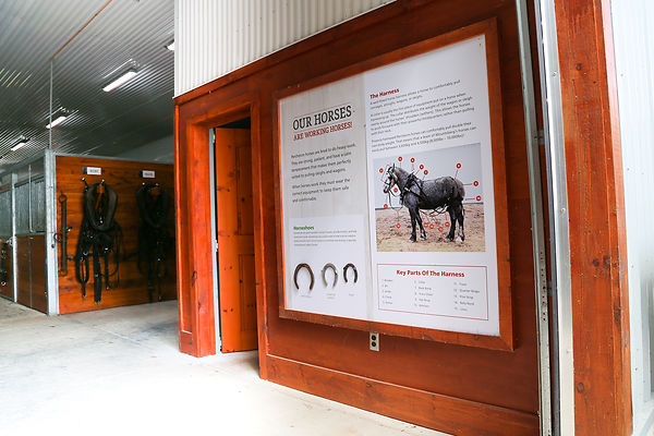 Horse Sign 1.jpg