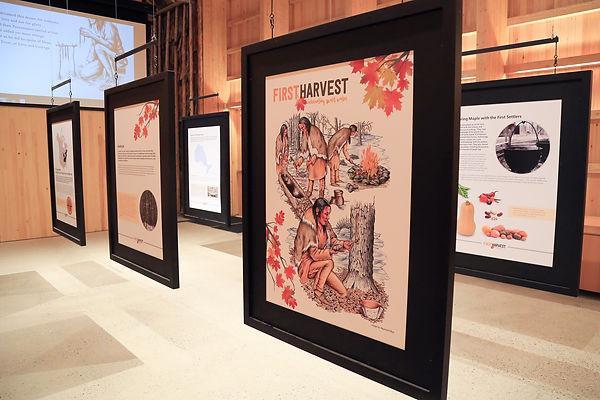 First Harvest 2.jpg