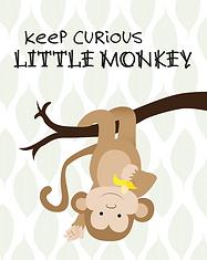 Monkey - Baby Animal