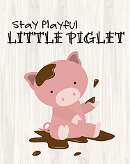 Pig - Baby Animal