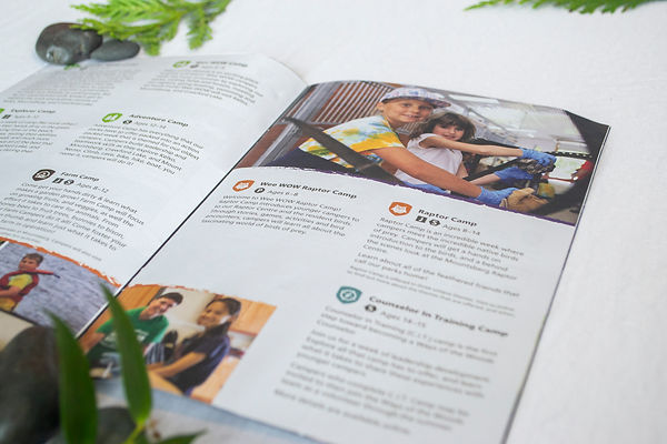 WOW Brochure 3.jpg