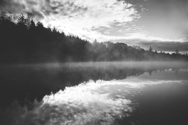 Nature - Mist