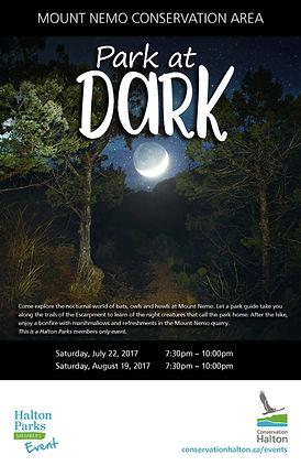 Poster - Park at Dark.jpg