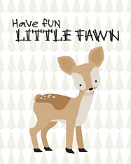 Fawn - Baby Animal