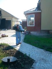 уничтожение комаров в Сургуте