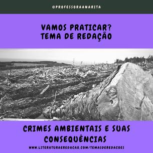 CRIMES AMBIENTAIS E SUAS CONSEQUÊNCIAS