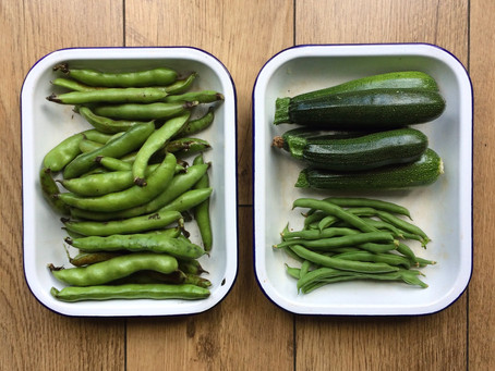 Broad Bean and Chard: a Risotto for a Summer Glut