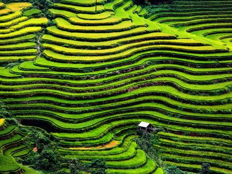 Good season to visit Northern Vietnam