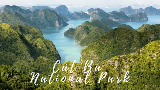 The amazing national parks in the North and Center of Vietnam