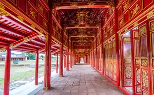 The Purple Forbidden City