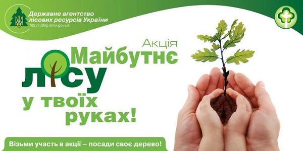 майбутнє лісу у твоїх руках.jpg