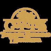 Logo HC Amarillo.png