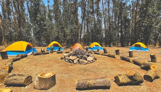 Camps HC