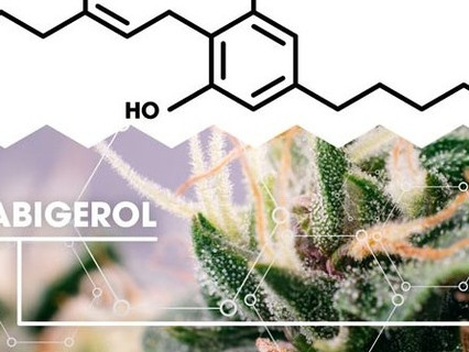 What is CBG: Benefits, Effects, and More?