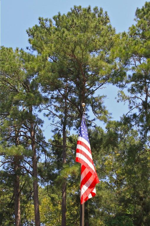 flag12.jpg