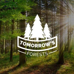 TOMORROWS FORESTS