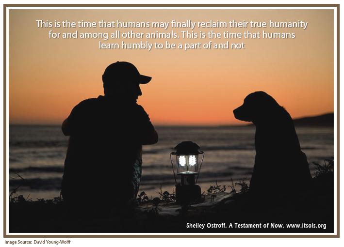 40 reclaim humanity copy