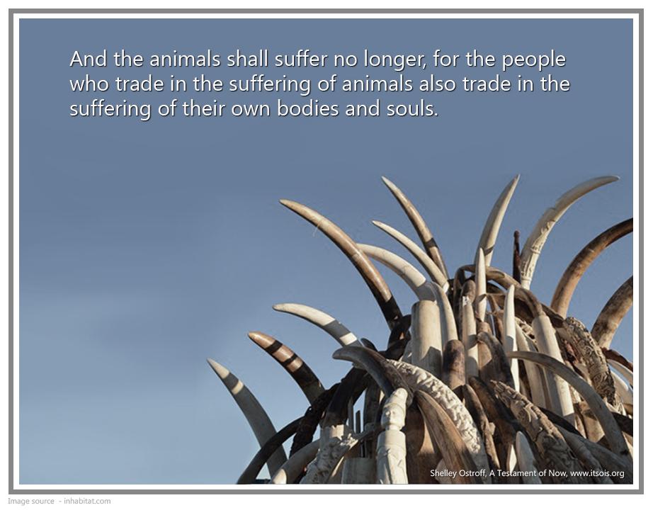 45 trade in souls