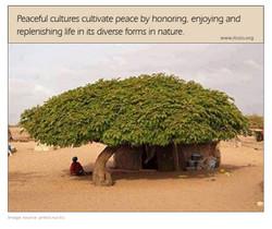 cultivate peace copy.jpg