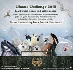 climate poster new.jpg