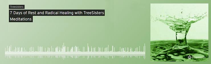 tree sisters 4.jpg