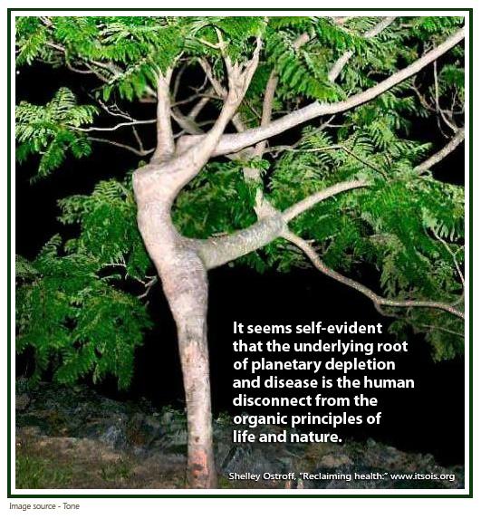 Self evident health final.jpg