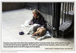 29  homeless dog copy