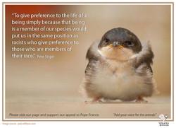 peter singer bird copy.jpg
