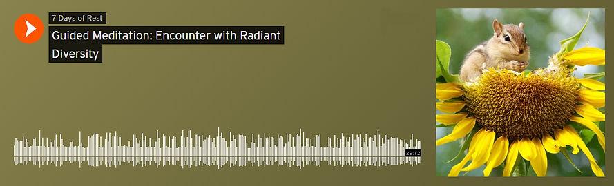 Radiant diversity encounter soundcloud.j