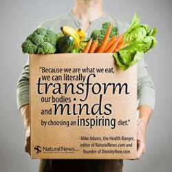 37 transform minds