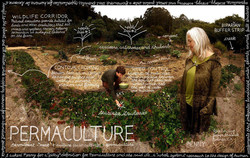 96 permaculture