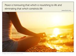 honoring life copy.jpg