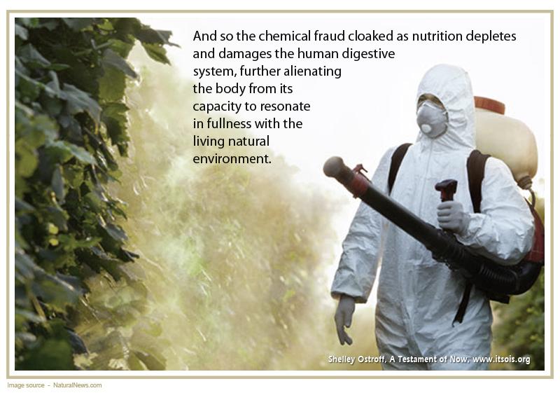 48 chemical plants copy