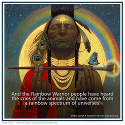 38 rainbow warrior